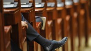 PNL și PDL au depus moțiunea simplă pe Justiție: 'PSD are alergie la Justiție'