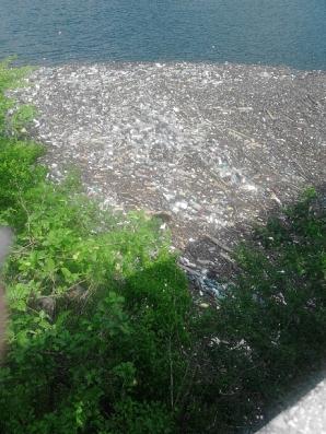 MARTOR OCULAR: Lacul Bicaz, acoperit de pet-uri