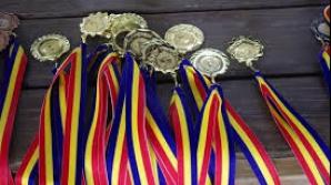 Elevii români au câștigat 15 medalii de aur la concursul internațional Infomatrix