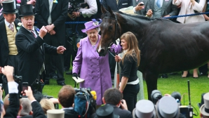 Calul Reginei Elisabeta a II-a, testat pozitiv la un test doping