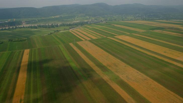 ÎNŞELĂCIUNE cu terenuri în valoare de peste 1.000.000 DE EURO