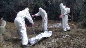 Teroriştii ar putea folosi virusul EBOLA pentru a crea o BOMBĂ BIOLOGICĂ