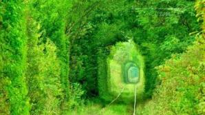 Tunelul iubirii, din România, pe lista Comorilor Ascunse