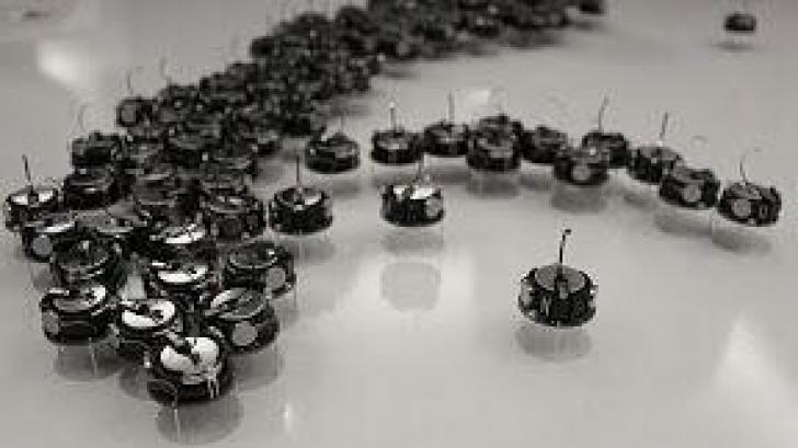 Roiuri de roboți ar putea lucra împreună pentru rezolvarea unor daune extinse