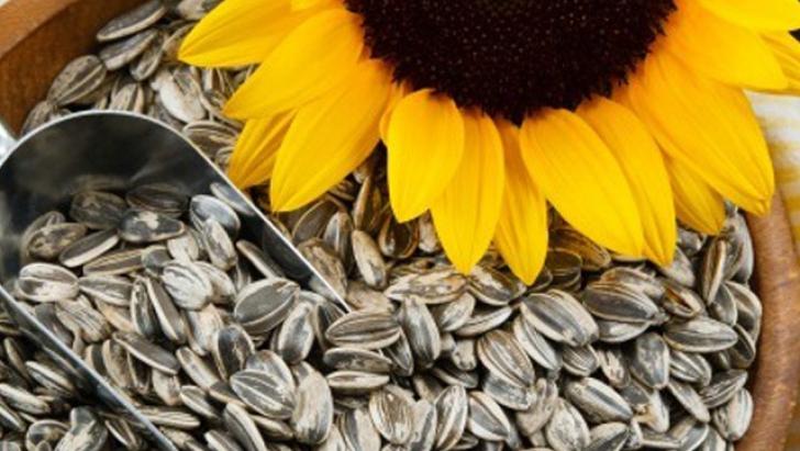 Românii consumă anual aproape 13.000 de tone de seminţe. Cât de dăunătoare sunt pentru sănătate?