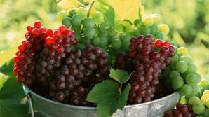 Cum să slăbeşti mâncând fructe de toamnă