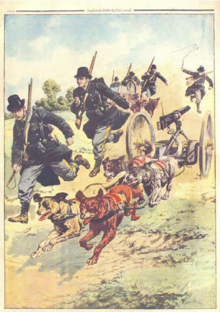 Belgia şi Frontul de Vest în 1914