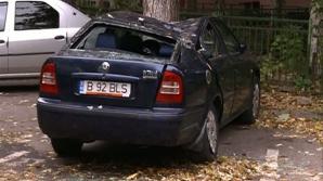 Efectele vremii rele: maşini distruse şi copaci căzuţi
