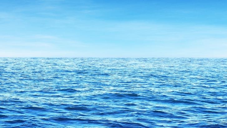 Cercetătorii avertizează: Oamenii sunt pe punctul de a provoca daune fără precedent oceanelor