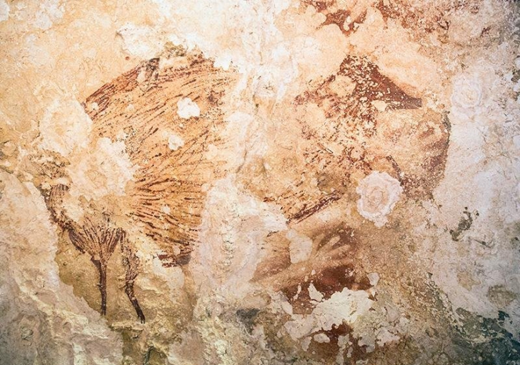 O serie de picturi rupestre vechi de 40.000 de ani rescriu istoria artei