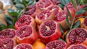 RODIA: Beneficii pentru sănătate cu 3 reţete delicioase