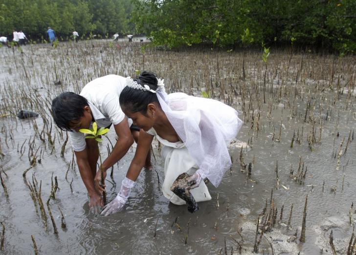 Cele mai BIZARE fotografii de nuntă