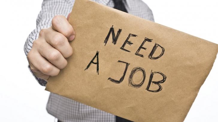 Nu reuşeşti să îţi găseşti job? Sfaturi CUM SĂ SUPRAVIEŢUIEŞTI
