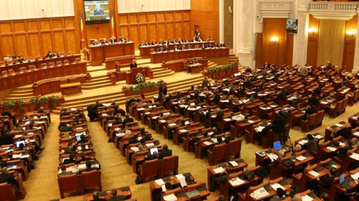 Ce fac parlamentarii de 1 Decembrie