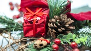 Plante de Crăciun care sunt OTRĂVITOARE