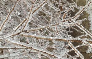 Ploaie îngheţată, la Zalău