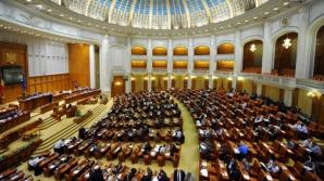 Parlamentul a votat pe articole proiectul legii bugetului de stat pe 2015