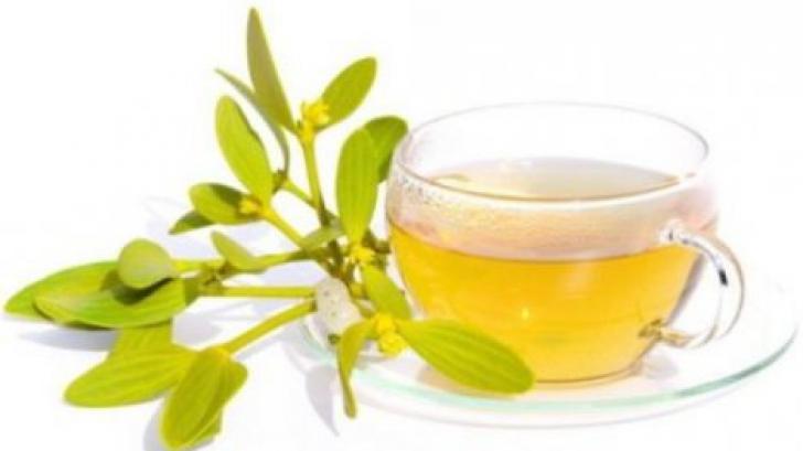 <p>Cum se prepare corect ceaiul de vâsc. Efectele lui sunt miraculoase</p>