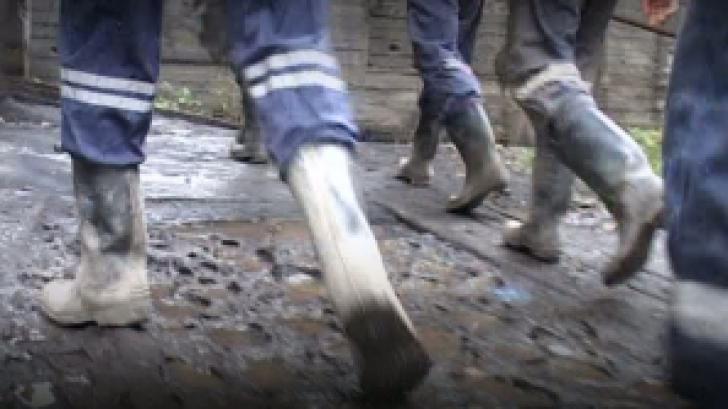 <p>Protest al minerilor</p>