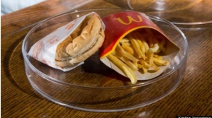 Cum arată un cheeseburger şi nişte cartofi McDonald`s în vârstă de 6 ani