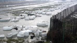 COD GALBEN de inundaţii pentru mai multe judeţe