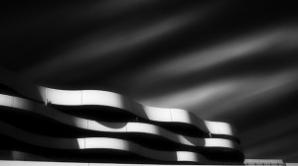 Fotografia lui Mihai Florea. Romanul a fost numit fotograful anului in Australia