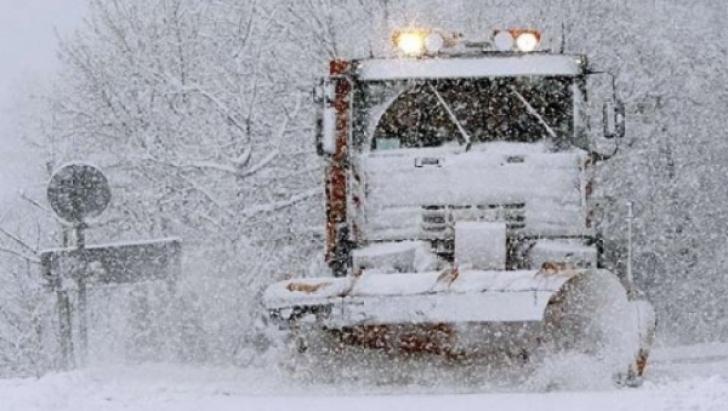 A căzut prima ninsoare din această toamnă. Stratul de zăpadă a atins 3 centimetri