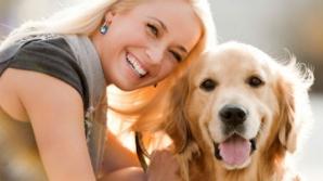 5 trucuri pe care orice deţinător de câine trebuie să le ştie