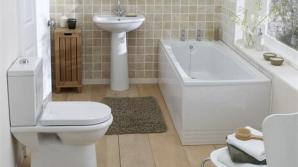 Ce nu trebuie să arunci în vasul de toaletă
