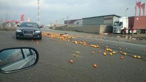 Martor Ocular. Sosea acoperita de portocale. Foto: Corina N