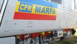 <p>CFR Marfă</p>