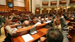 <p>Proiectul de modificare a Codului Silvic, adoptat de deputați. PNL critică noile prevederi</p>