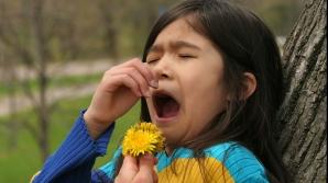 Iată cum poţi diminua simptomele rinitelor alergice