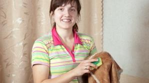 Cum cureți și recondiționezi geaca de piele