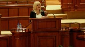 Deputații au votat pentru extinderea urmăririi penale a Elenei Udrea în dosarul Gala Bute