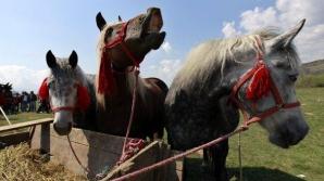 Paștele Cailor, zi importantă în folclorul popular