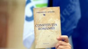 Stroe: PNL înlocuiește cinci membri ai Comisiei pentru revizuirea Constituției