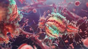 14 semne de alarmă că ai putea fi infectat cu HIV. Nu le ignora!