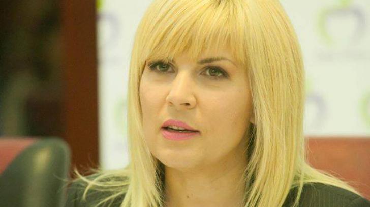 Elena Udrea cere să fie confruntată cu denunţătorii săi