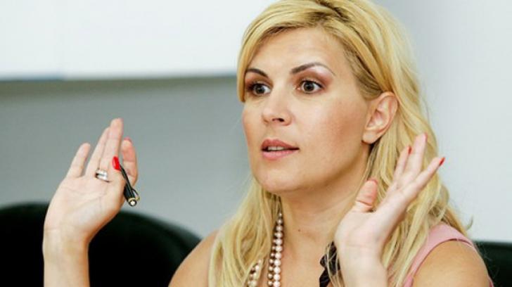 Dosarul Gala Bute. Recursul Elenei Udrea, judecat pe 5 martie
