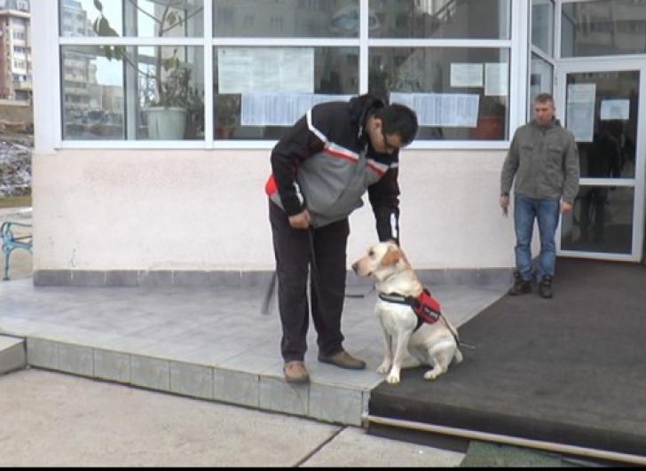 <p>Câinele Maia şi Petrică</p>
