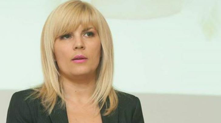 DNA cere arestarea Elenei Udrea şi în dosarul Microsoft