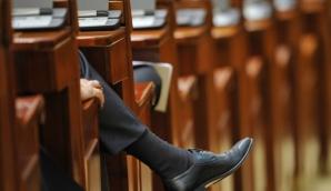 Deputaţii dezbat modificările la Codul Silvic