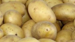 Efectele uimitoare ale sucul de cartofi cruzi. Vindecă boli grave. Reţeta călugărilor budişti