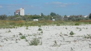 Descoperire incredibilă pe o plajă din Năvodari