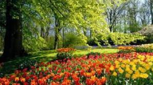 Prima zi a primăverii