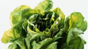 Ce nu ştiai despre salata verde