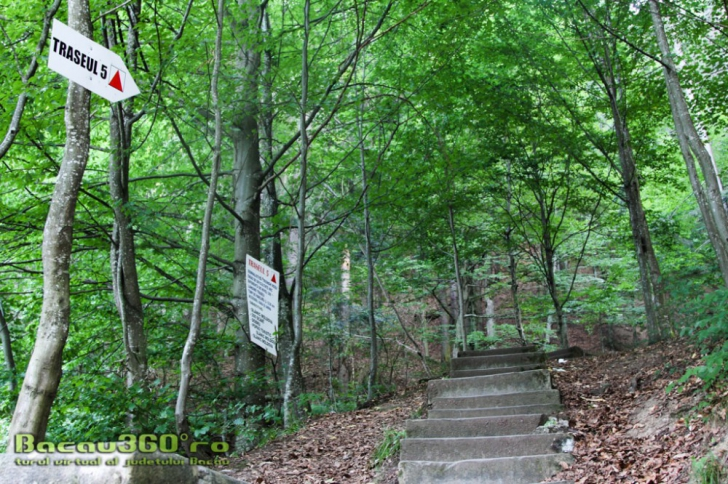 """Traseul turistic """"300 de scări"""" din Slănic Moldova, închis definitiv de Ocolul Silvic Bisericesc"""