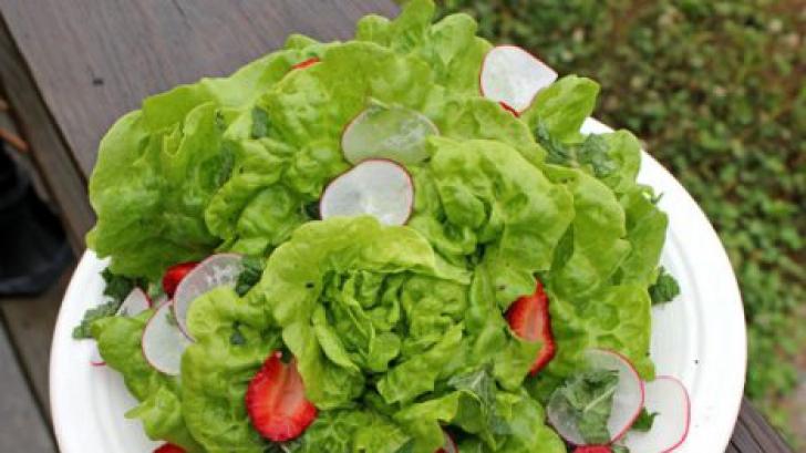 Beneficiile neştiute pe care le aduce organismului salata verde