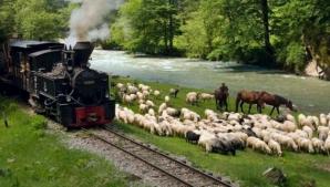 Trenul cu aburi